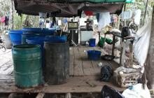Desmantelan laboratorio de coca de Los Puntilleros en Mapiripán, Meta