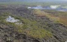 En video | Incendio en Parque Isla Salamanca fue controlado con 24 descargas de agua