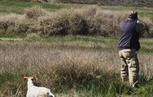 Corte tumba caza deportiva porque vulnera derecho de los animales