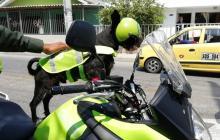'Compañero' está montado en una moto de Policía.