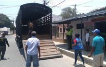 Rescatan caballo que había sido víctima de maltrato en Soledad