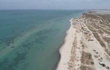 Declaran protección para pastos marinos en La Guajira