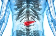 Nuevo tratamiento farmacológico frena propagación de cáncer de páncreas