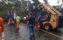 Vendaval causó estragos en Chiriguaná