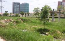 Residentes del barrio La Castellana piden limpieza de lote abandonado