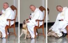 En video | Perro entra a iglesia e impide al sacerdote continuar la misa