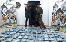 La marihuana incautada por el grupo de Carabineros de la Policía Metropolitana en la Vía 40.