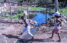 Preocupación en La Cangrejera por agua estancada y reptiles