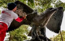 El Águila Son 2,90 metros de ancho, que comprenden de ala a ala de la ave de bronce, y 1,74 centímetros de altura.