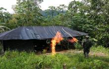 Destruyen laboratorio de cocaína en el sur de Córdoba