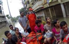 Los cocodrilos se adueñan de las inundadas calles de una ciudad en India