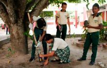 Estudiantes de colegios del Atlántico preparan proyectos ambientales