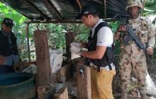 Fiscalía y Ejército destruyen laboratorio de coca en La Guajira