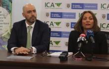 ICA confirma casos de fusarium en cultivos de banano La Guajira
