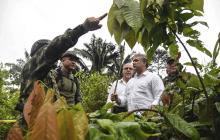 EEUU certifica a Colombia en lucha contra las drogas