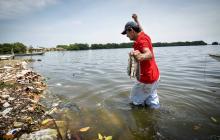 Un centenar de peces ha muerto por polución en La Playa