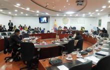 La discusión en el Consejo de Política Criminal sobre la cadena perpetua