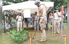 20.000 metros2 de Ovejas, libres de minas antipersonal