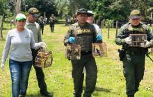 La Policía y personal de CVS con las aves.