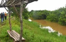 CRA investiga el origen del sedimento en el Cisne