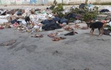 Los vecinos comentan que los perros callejeros esparcen estos residuos por todo el sector.