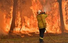 En video | Sídney combate un fuego que ha arrasado 3 millones de hectáreas en Australia