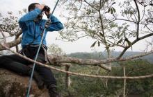 El científico Nicolas Moulin inspecciona el horizonte en busca de la desaparecida mariposa.