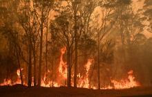 Miles de personas evacuadas por los incendios en Australia que amenazan con cortes eléctricos