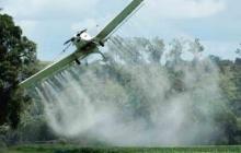El pasado 30 de noviembre se publicó el proyecto de decreto para comentarios con el que se busca reanudar la aspersión de cultivos ilícitos con glifosato.