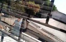 En video | Conflicto entre vecinos por tenencia de animales en el norte de Barranquilla