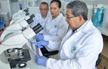 Milton Quintana, Grethel León y Marco Anaya, integrantes del Grupo de Investigación en Genética de Unisimón.