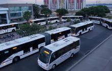 Buses de Transmetro.