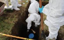 En video | JEP reporta que ha exhumado 54 cuerpos de posibles 'falsos positivos' en Dabeiba