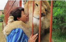 """""""Como mamá, tenía mal presentimiento"""":  antigua cuidadora de Júpiter, el león desnutrido"""
