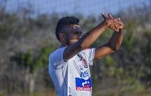 Miguel Ángel Borja volvería a la titular de Junior junto a Teófilo Gutiérrez. El cordobés fue suplente ante Deportes Tolima.