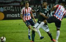 El Palmeiras visitó el año pasado el Metropolitano, derrotando 2-0 a Junior