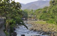 """El Guatapurí, un """"río de piedras"""" por intensa sequía"""