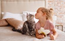 Mascotas: cómo fortalecer su sistema inmunológico