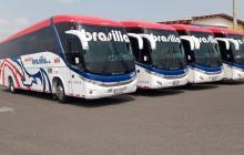Varios de los vehículos de la empresa Brasilia que suspende operaciones.