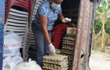 Garantizan atención en salud y alimentos para excombatientes durante cuarentena