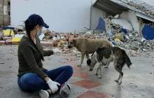 Rachelle Amram, ayuda a los animales callejeros en medio de la cuarentena.