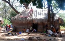 ONIC alerta que más de 200 mil familias indígenas se encuentra en alto riesgo de contagio