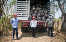 La secretaria de Desarrollo Económico de Sucre, Liz Torres, junto a dos productores agropecuarios.