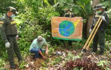 Con la siembra de 200 árboles se celebró el Día Mundial de la Tierra en Córdoba