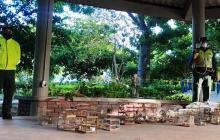 Policía recupera fauna silvestre en el Mercado de Granos de Barranquilla