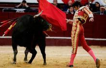 Aprueban proyecto para desincentivar corridas de toros en Bogotá