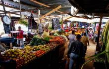 Minsalud define protocolos de bioseguridad para plazas de mercado