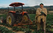 La clave para mantener la producción agrícola en Colombia pese a pandemia
