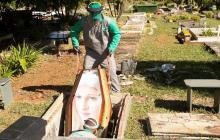 Brasil, sin señales de estabilización frente a la pandemia, con casi 55.000 muertes