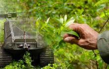 Investigan presunta alteración en cifras de erradicación de cultivos